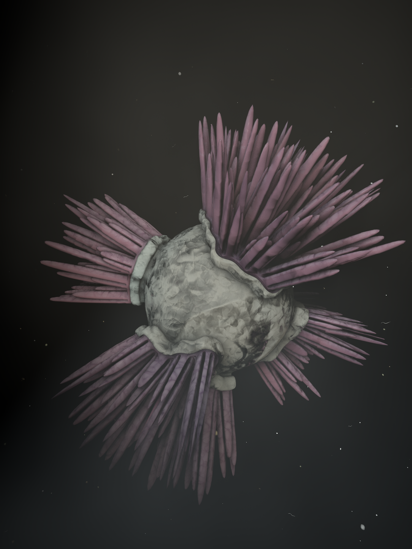 Spiked Urchin.png