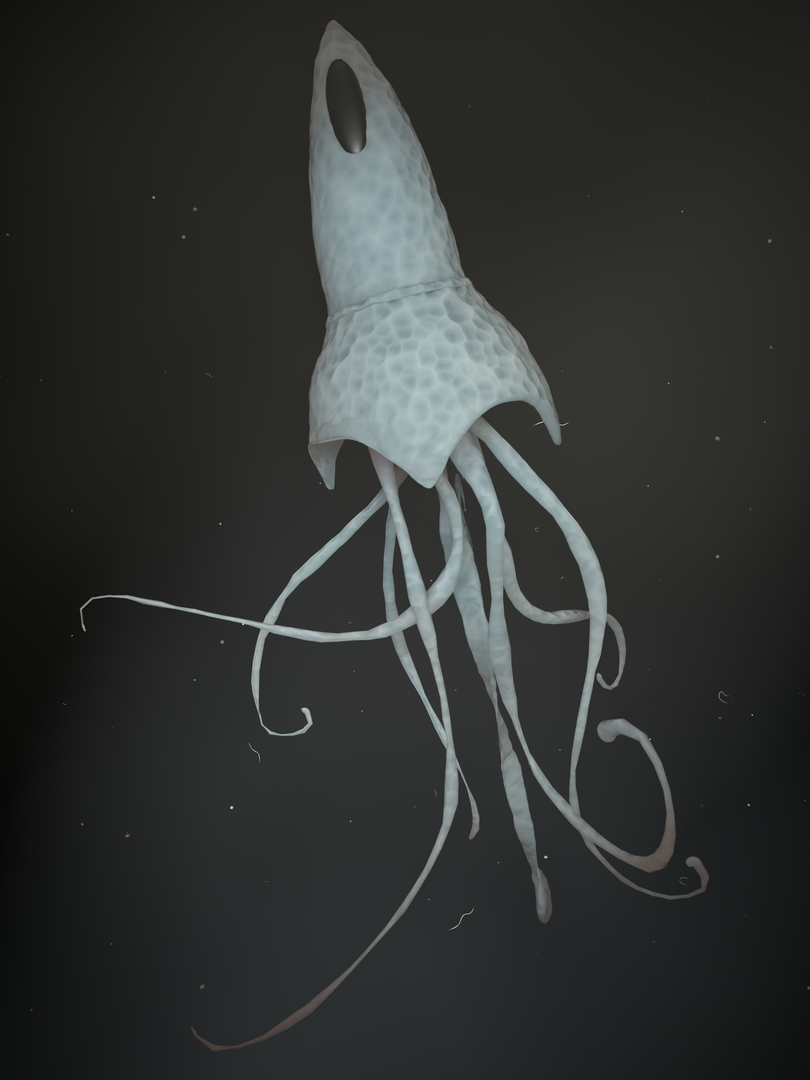 Pointed Squid.png