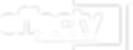 Effectv_logo_designation_TM_rev_rgb.png
