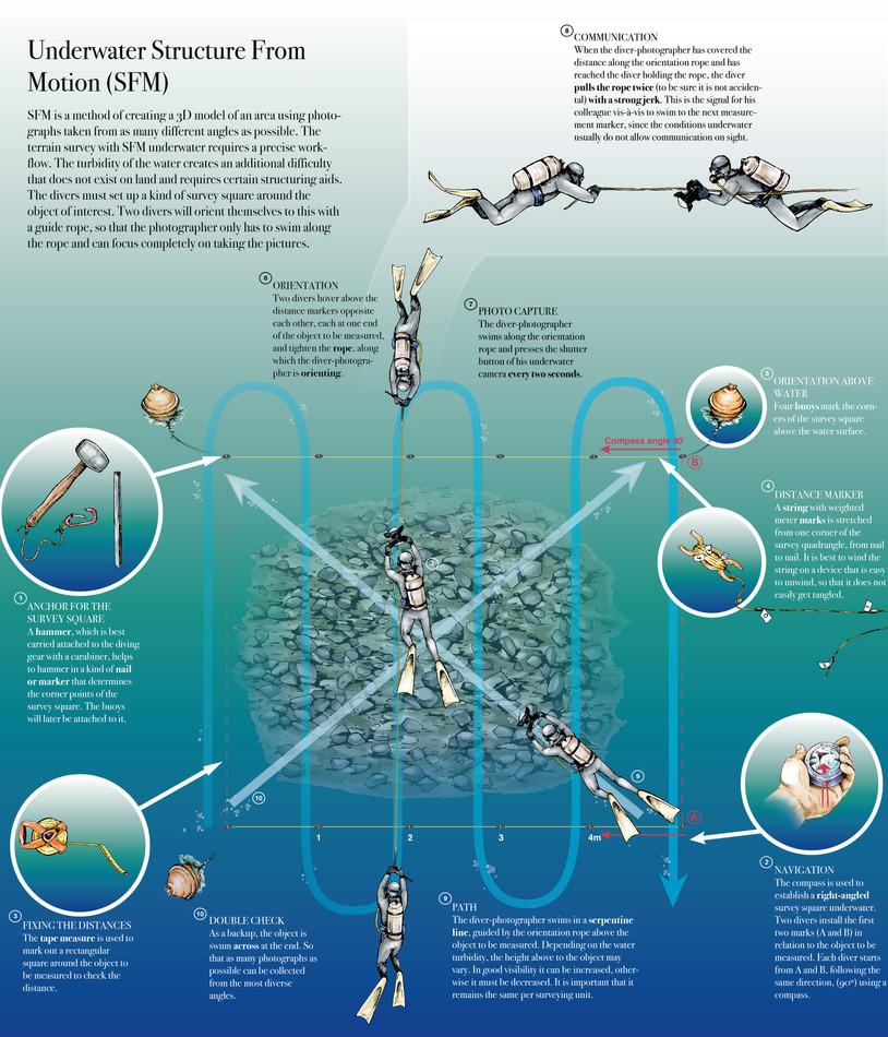 Infografik_octopus_korrjulien_Zeichenfla
