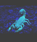 Full Moon in Scorpio tonight!  Is the night too bright for the scorpions?