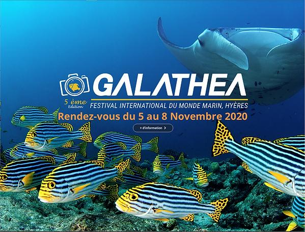 galathea.png