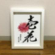 ichika_chan.jpg