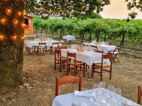 Cena in vigna   Azienda Agricola Calatroni