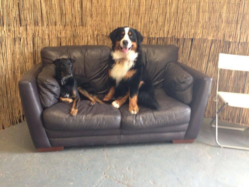 Max & Alfie