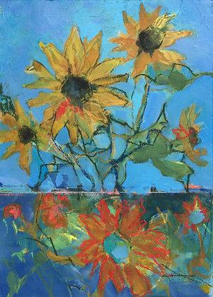 Daylight Sunflowers