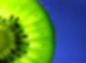 Kiwi, Kiwi24, Kiwi24 Immobilien Silvia Hakenberg, Immobilien, Dienstleistung, Makeln, Hausverkauf