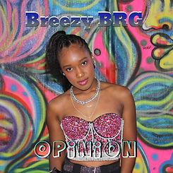 Breezy BRG Opinion Artwork.jpg