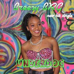 Breezy BRG - Underdog Art 2.jpg