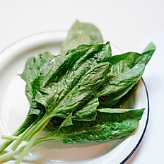 Spinach / 菠菜 / Epinard / ほうれん草 / 시금치