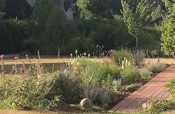 Jardin Privé Paysagiste Le massif de vivaces 5 mois après la plantation