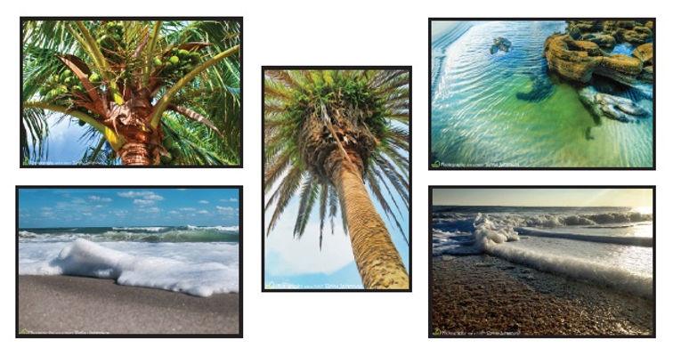 Beach Card Set