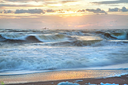7D6A1085 SHRIMP WAVES