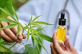 Medicinal-Cannabinoid-Eyedropper-Plant-C