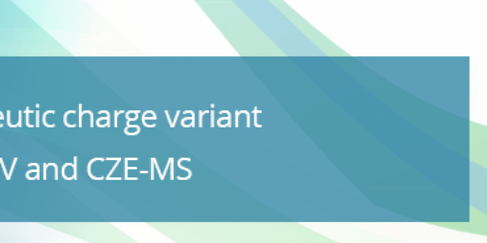 Rapid Biotherapeutic Charge Variant Analysis by CZE-UV and CZE-MS