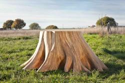 Table-racines-carré_Thomas-de-Lussac_crédit-photo-Young-Ah-Kim-0761 BDEF