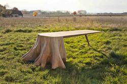 Table-racines-carré_Thomas-de-Lussac_crédit-photo-Young-Ah-Kim-0743 BDEF