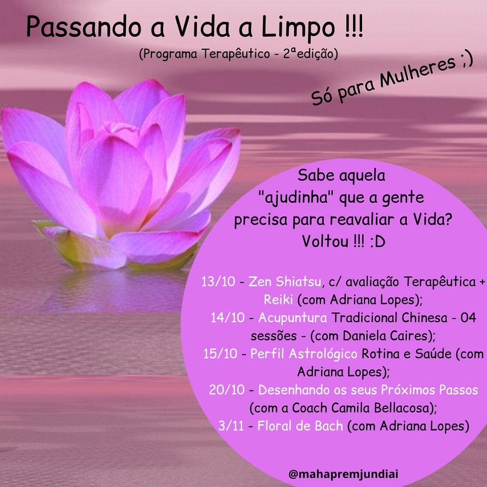 Passando a Vida a Limpo2021_edited.jpg