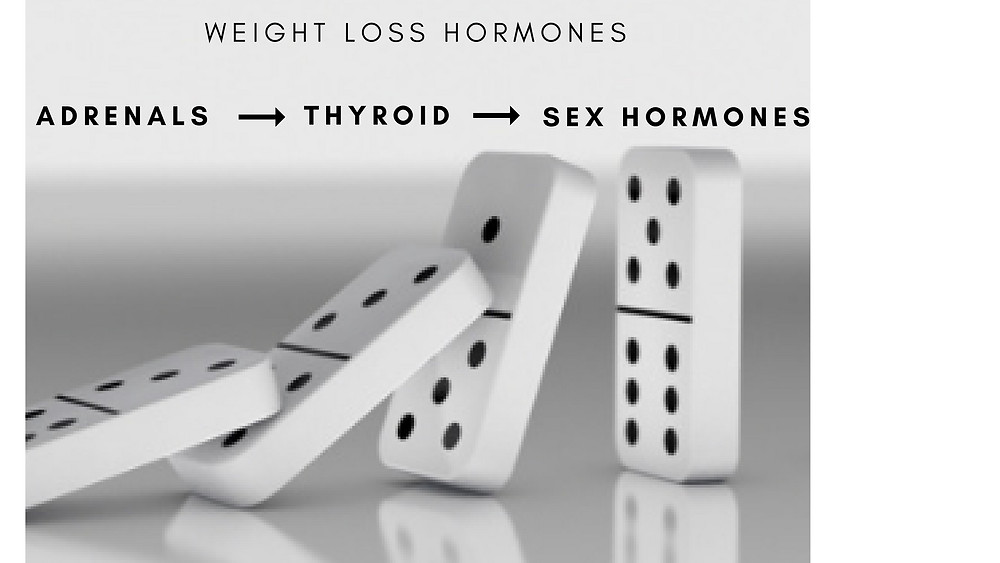 There are hormonal systems that control weight including: adrenals, thyroid, and sex.  Learn how they contribute to weight gain and what you can do to ensure their health and your weight loss!