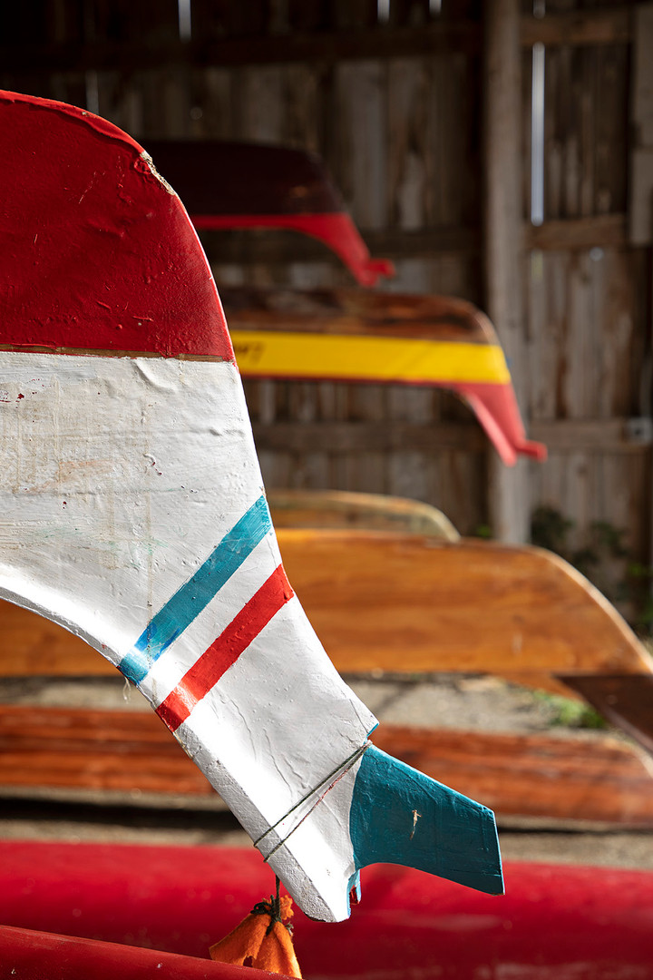 The upside-down ends of Lummi canoes in storage. These wooden canoes are used for practice before the authentic war canoe races during major festivals. Lummi Island, WA. May, 2019.