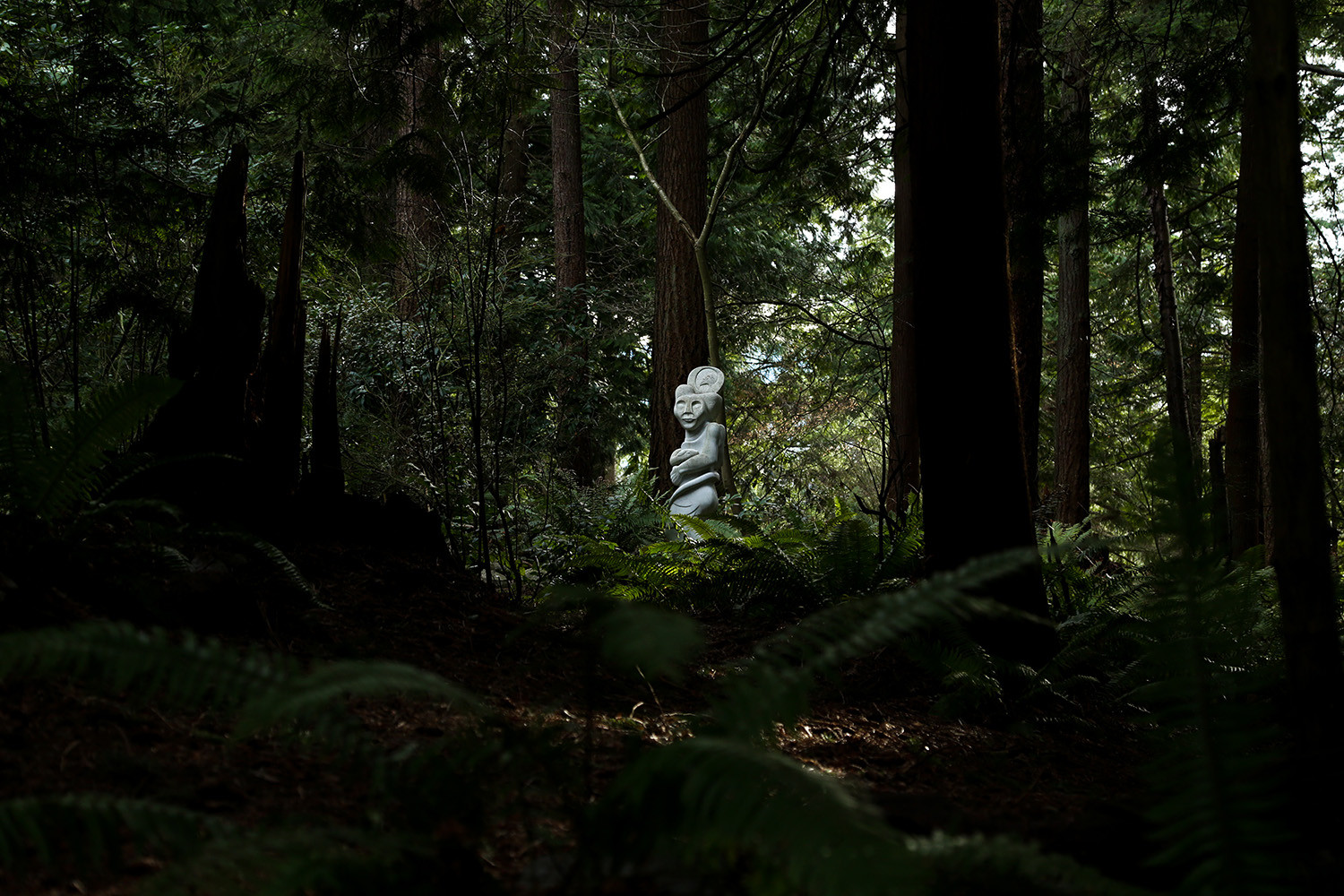Natura, a sculpture by Charles J. Armstrong, hides amidst some of the larger trees in the park. Big Rock Garden Park, Bellingham, WA. 2018.