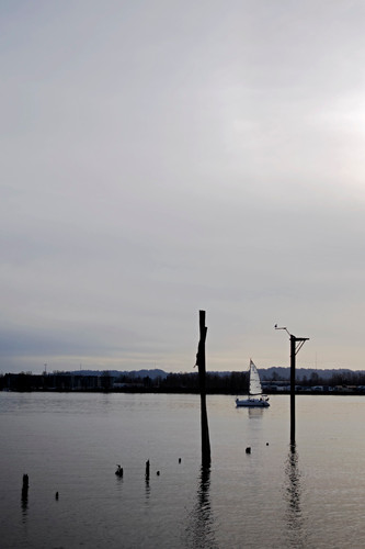 A sailboat cruises down the Columbia River on a cloudy, Pacific Northwest day. Vancouver, WA. 2017.