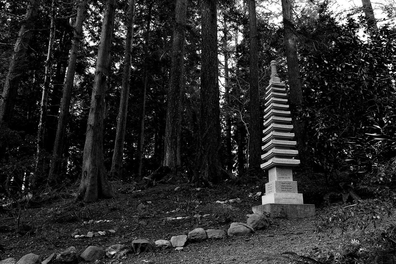A Korean War memorial sculpture alongside one of the trails through Big Rock Garden Park. Bellingham, WA. 2018.
