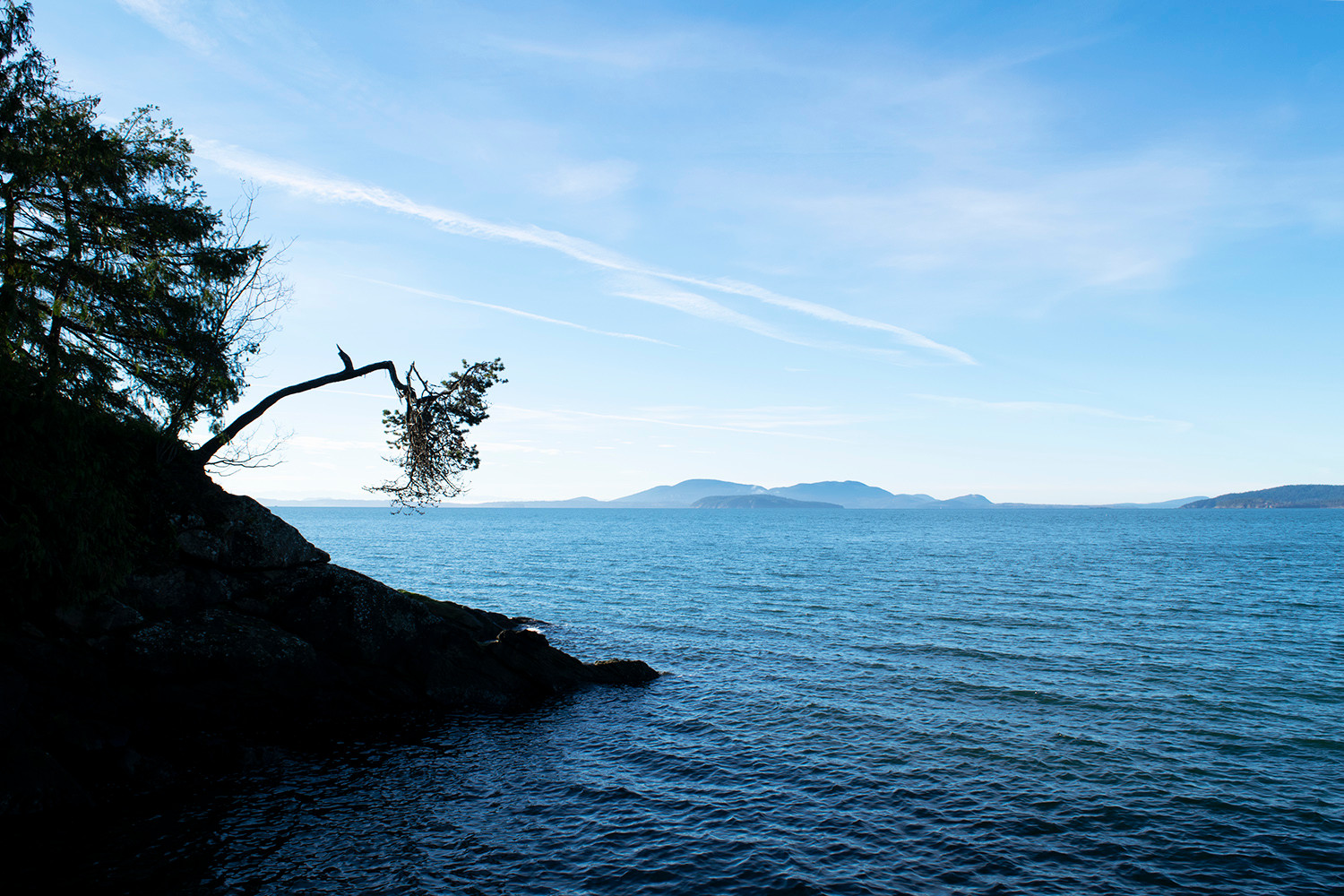 The horizons of Bellingham Bay as seen from Larrabee State Park. Bellingham, WA. 2018.