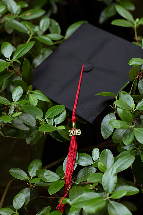 A Western Washington University graduation cap nestled in the shrubs of Big Rock Garden Park. Bellingha, WA. June, 2019.