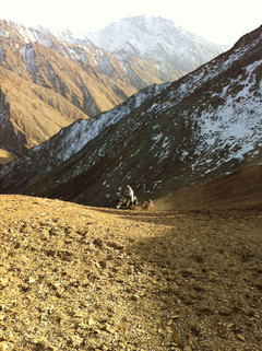 Hunting Adventure Kyrgyzstan