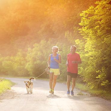 gezonde bewegende, wandelende, gelukkige, evenwichtige man, vrouw en hond