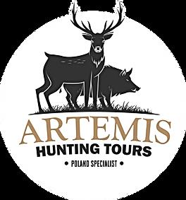 artemis logo.png