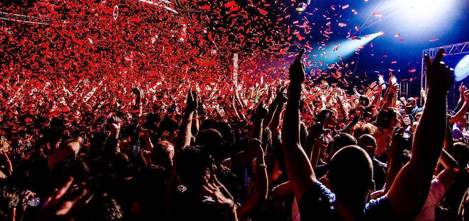 Evenementen bewaking, festival, concert, VIP