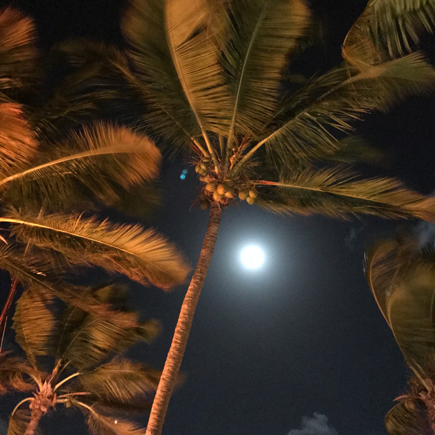 Full moon at Trellis Bay