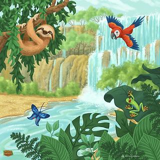 rainforest-kit-box-download.webp