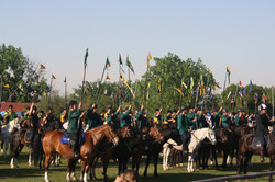tent pegging south africa