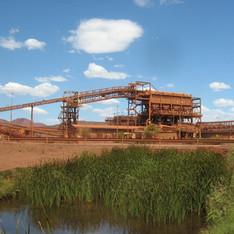 Pilbara Leaf-nosed Bat Mining Impacts Study