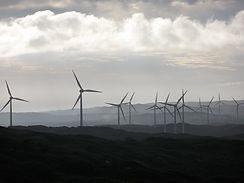albany_wind_farm.jpg
