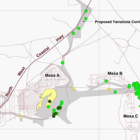 Mesa A Sandsheet Management Plan