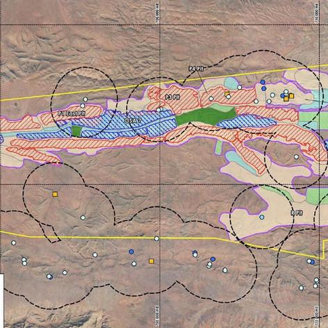 Mining Area C Vertebrate Fauna EIA
