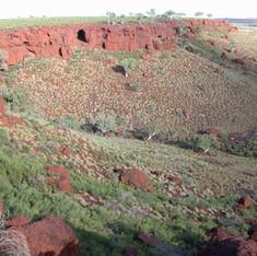 Mesa A and Robe Valley Troglofauna Survey