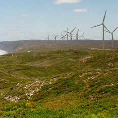 Albany Wind Farm EMP