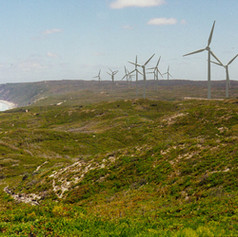 Albany Wind Farm EMP
