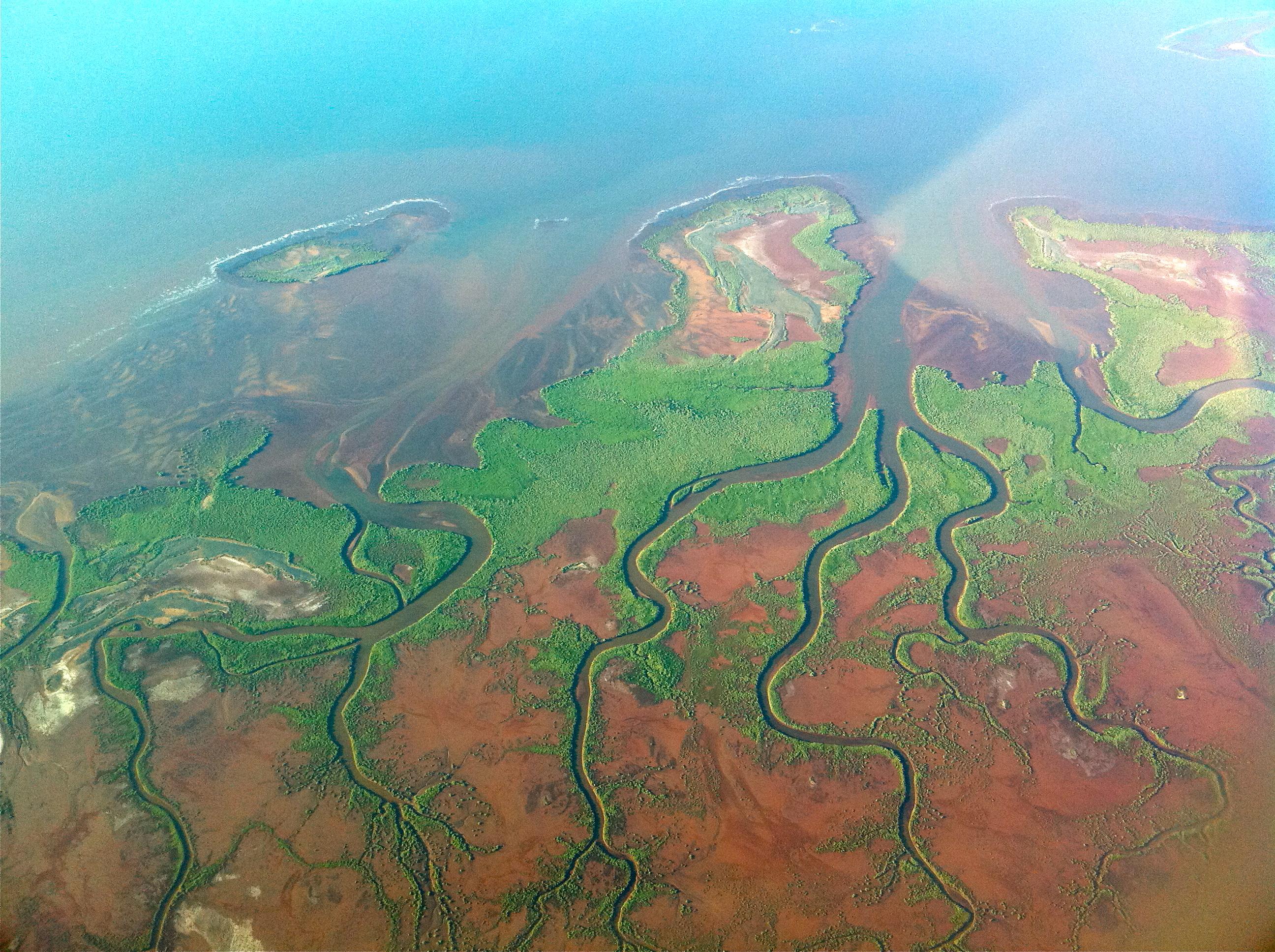 pilbara_mangroves2