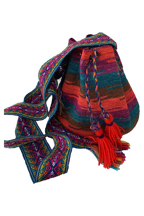 Shigra multicolor Norma