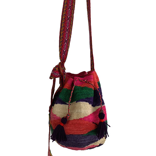 Shigra multicolor L