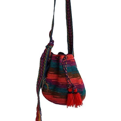 Shigra multicolor Ecuador