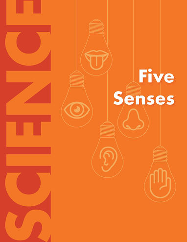 Five Senses Book Cover.jpg