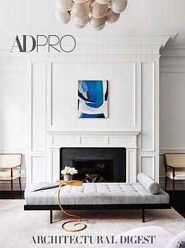 ad pro press cover .jpg
