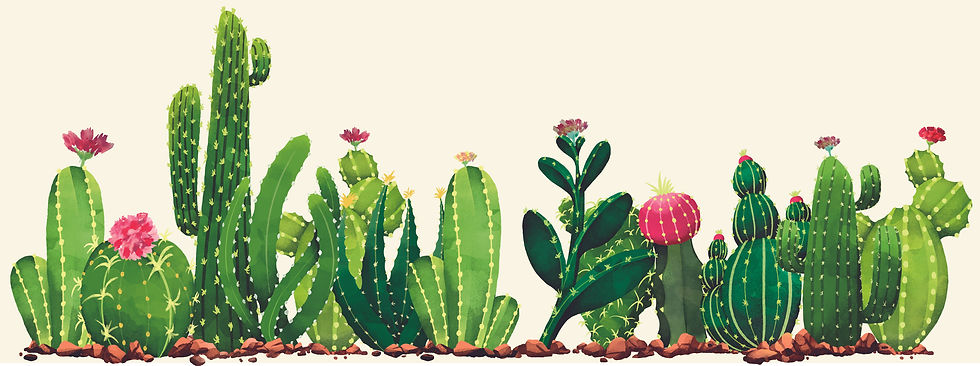Cactus LL5.jpg